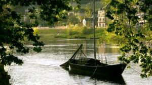 Parc régional Loire Anjou Tourraine